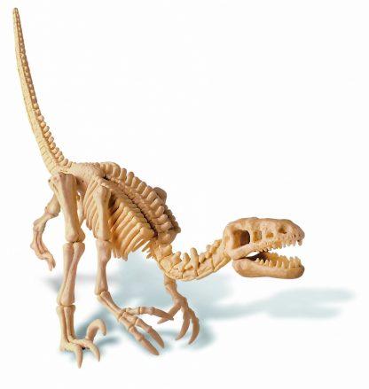 "Набор юного археолога ""Откопай скелет динозавра"" - Велоцираптор"