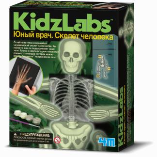 """Научный набор """"Юный врач"""" - Скелет человека"""